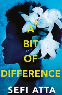 Libro A BIT OF DIFFERENCE