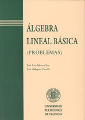 Libro ALGEBRA LINEAL BASICA