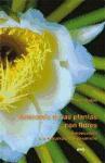 Libro ANATOMIA DE LAS PLANTAS CON FLORES: INTRODUCCION A LA ESTRUCTURA Y EL DESARROLLO