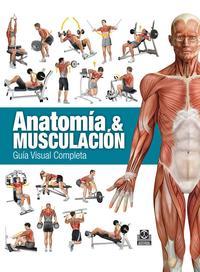 Libro ANATOMÍA & MUSCULACIÓN. GUÍA VISUAL COMPLETA