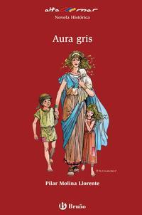 Libro AURA GRIS