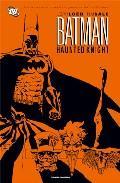 Libro BATMAN: HAUNTED KNIGHT