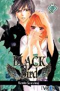 Libro BLACK BIRD Nº 7