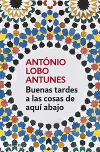 Libro BUENAS TARDES A LAS COSAS DE AQUI ABAJO