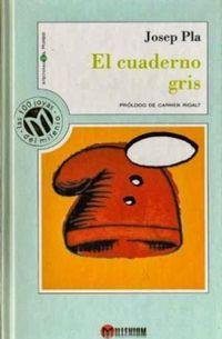 Libro EL CUADERNO GRIS