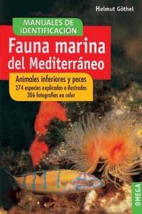 Libro FAUNA MARINA DEL MEDITERRÁNEO : ANIMALES INFERIORES Y PECES
