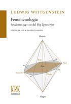 Libro FENOMENOLOGIA. SECCIONES 94-100 DEL BIG TYPESCRIPT