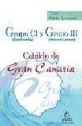 Libro GRUPO C1Y GRUPO IIIDEL CABILD O DE GRAN CANARIA. TEST PARTE COMUN