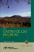 Libro GUIA CASTRO DE LAS PAREDEJAS: MEDINILLA, AVILA