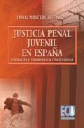 Libro LA JUSTICIA PENAL JUVENIL EN ESPAÑA. LEGISLACION Y JURISPRUDENCIA CONSTITUCIONAL