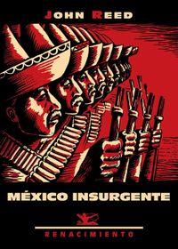 Libro MEXICO INSURGENTE