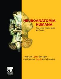 Libro NEUROANATOMIA HUMANA