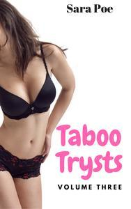 Libro TABOO TRYSTS VOLUME THREE