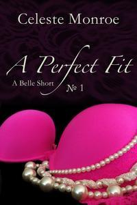Libro A PERFECT FIT