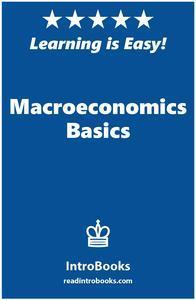 Libro MACROECONOMICS BASICS