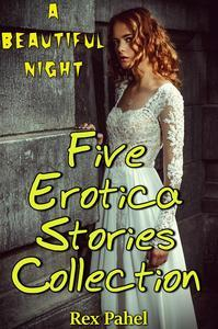 Libro A BEAUTIFUL NIGHT: FIVE EROTICA STORIES COLLECTION
