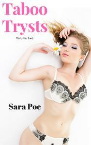 Libro TABOO TRYSTS VOLUME TWO