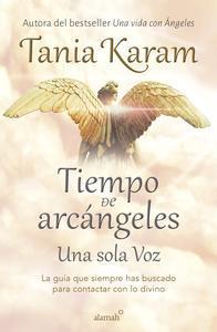 Libro TIEMPO DE ARCÁNGELES