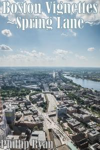 Libro BOSTON VIGNETTES: SPRING LANE