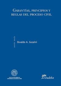 Libro GARANTIAS  PRINCIPIOS Y REGLAS DEL PROCESO CIVIL