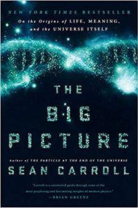 Libro THE BIG PICTURE