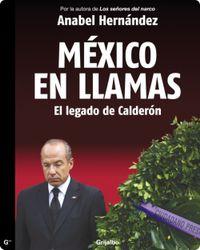 Libro MÉXICO EN LLAMAS: EL LEGADO DE CALDERÓN